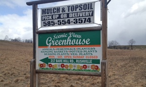 Our official business sign located outside at Scenic View Greenhouse in Rushville, NY